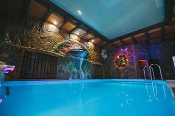 Одноэтажные бани с бассейном под ключ фото